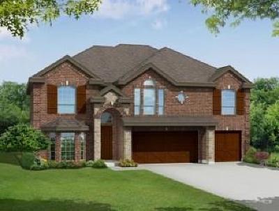 Glenn Heights Single Family Home For Sale: 204 Ravenel Street