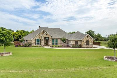 Parker County Single Family Home For Sale: 100 Carson Drive