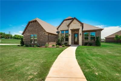 Parker County, Tarrant County, Hood County, Wise County Single Family Home For Sale: 1600 Rock Ridge Lane