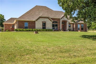 Weatherford Single Family Home For Sale: 307 Ellis Creek Court