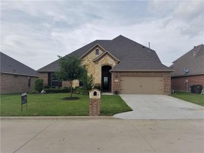 Fort Worth Single Family Home For Sale: 11104 Silver Horn Drive