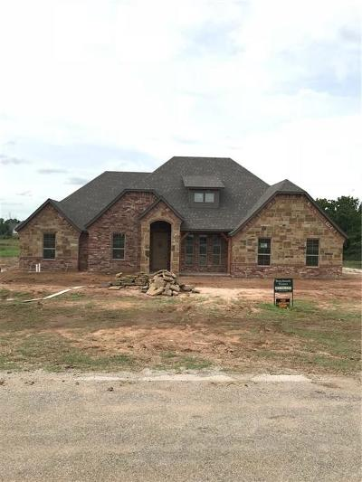 Lipan Single Family Home Active Contingent: 133 Lakeside Drive