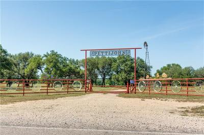 Dublin Farm & Ranch For Sale: 1100 Fm 2823