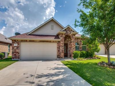 Frisco Single Family Home For Sale: 12104 Knots Lane