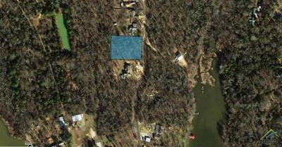 Quitman Residential Lots & Land For Sale: 0000 Cr 1452