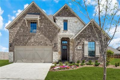 McKinney Single Family Home For Sale: 6808 Sleepy River Street