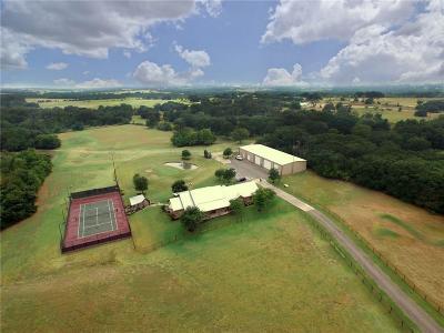 Parker County Farm & Ranch For Sale: 4177 Fm 920