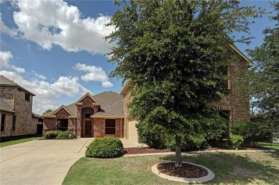 Allen Single Family Home Active Kick Out: 1625 Burberry Drive