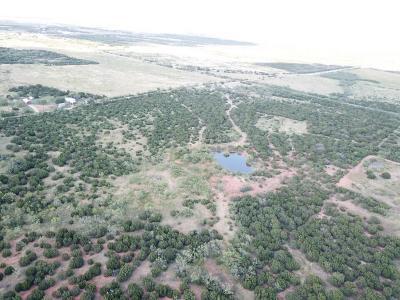 Abilene Farm & Ranch For Sale: 9.749 Braune