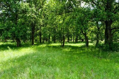 Jacksboro Farm & Ranch For Sale: 6068 State Highway 59 N