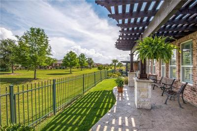 Frisco Single Family Home For Sale: 931 Imperial Valley Lane