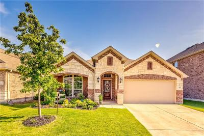 Frisco Single Family Home For Sale: 11417 Champion Creek Drive