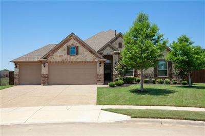 Flower Mound Single Family Home For Sale: 1412 Sundown Drive
