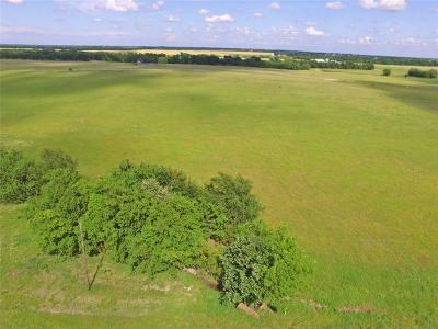 Whitewright Farm & Ranch For Sale: Tr 10 Fm 1752 S