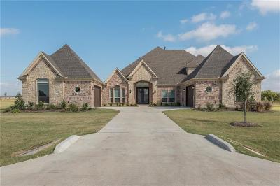 Denton County Single Family Home For Sale: 2840 Prairie View Drive