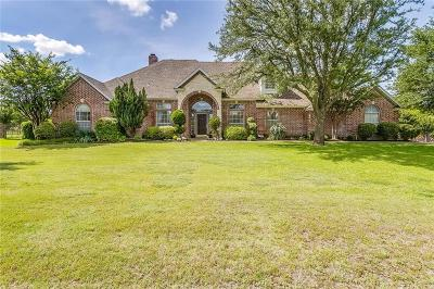 Parker County Single Family Home For Sale: 1507 Hunterglenn Drive