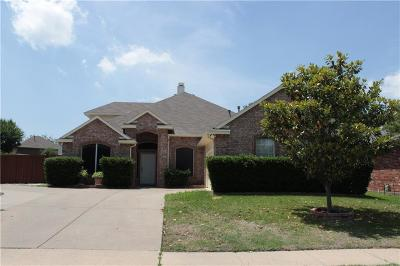 Mesquite Single Family Home For Sale: 517 Onyx Court