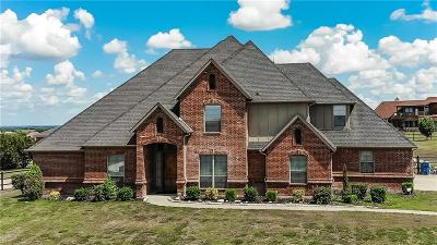 Aledo Single Family Home For Sale: 117 Jessica Drive