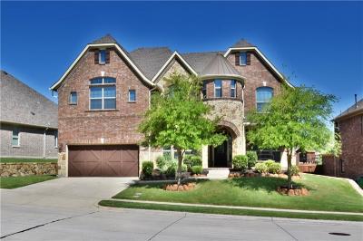 McKinney Single Family Home For Sale: 4100 Valley Ridge Lane