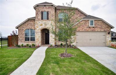 Frisco Single Family Home For Sale: 11189 Villa Canales Lane