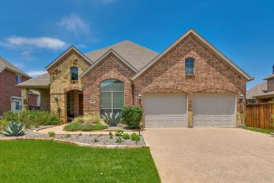 Grand Prairie Single Family Home For Sale: 3012 N Camino Lagos