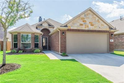 McKinney Single Family Home For Sale: 201 Mount Olive Avenue