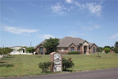 Single Family Home For Sale: 13261 Willow Creek Drive