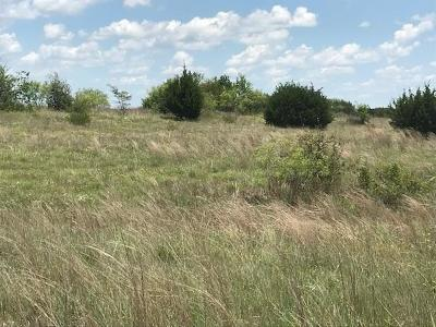 Hico Residential Lots & Land For Sale: Tbd County Road 206