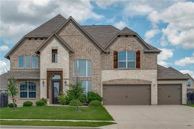 Little Elm Single Family Home For Sale: 3104 Lakemont Drive