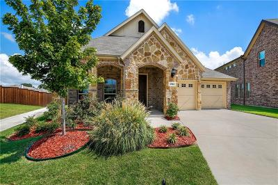 Rowlett Single Family Home Active Option Contract: 5914 Begonia Drive