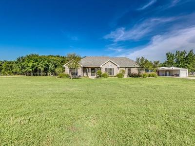 Pilot Point Single Family Home For Sale: 9008 Pecan Valley
