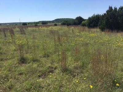 Hico Residential Lots & Land For Sale: 3 County Road 234