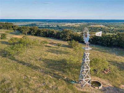 Santo Farm & Ranch For Sale: Chestnut Mountain Road