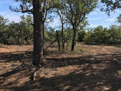 Young County Residential Lots & Land For Sale: 5564 S 16 Highway