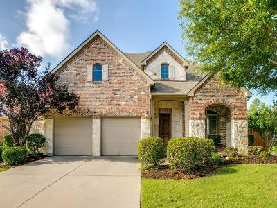 Plano Single Family Home Active Option Contract: 9200 Old Veranda Road