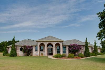 Wise County Single Family Home For Sale: 348 Paradise Canyon Circle