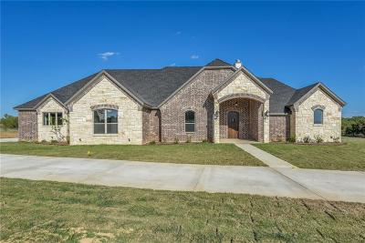Millsap Single Family Home For Sale: 101 Hondo Circle