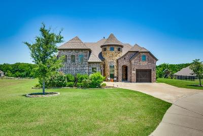 Gunter Single Family Home For Sale: 1404 Coyote Court
