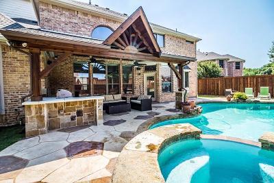 Frisco Single Family Home For Sale: 15689 Atkins Lane