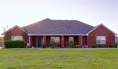 Nevada Single Family Home For Sale: 1032 Savannah Drive
