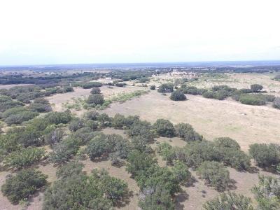 Mills County Farm & Ranch For Sale: 1313 Fm 574 W