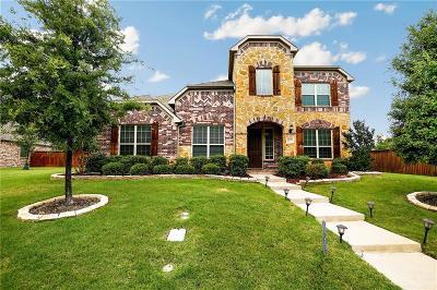 Allen Single Family Home For Sale: 1087 Arches Park Drive