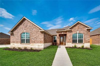 Glenn Heights Single Family Home For Sale: 530 Roaring Springs Drive