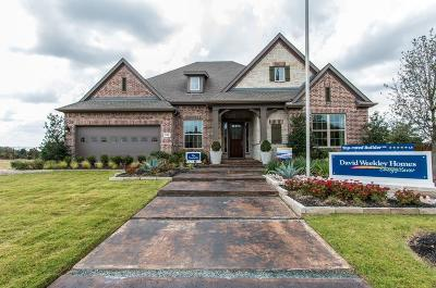 Prosper Single Family Home For Sale: 841 Nightwind Court