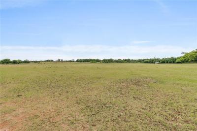 Granbury Farm & Ranch For Sale: 601 Marigold Court