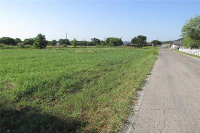 Palo Pinto County Commercial Lots & Land For Sale: 00 Holly Hill Road