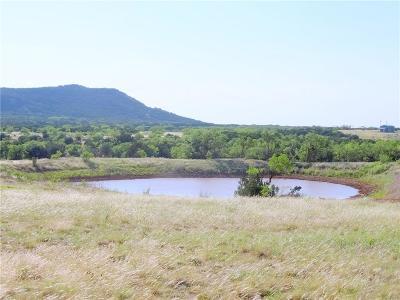 Abilene Farm & Ranch For Sale: 1108 Old Coleman Highway
