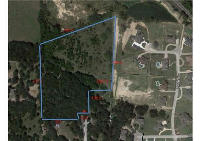 Aledo Farm & Ranch For Sale: Tbd Windmill Road