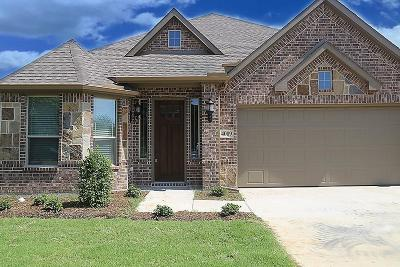 Denton Single Family Home For Sale: 4009 Winston Drive
