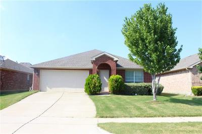 Little Elm Single Family Home For Sale: 2051 Sunny Side Drive
